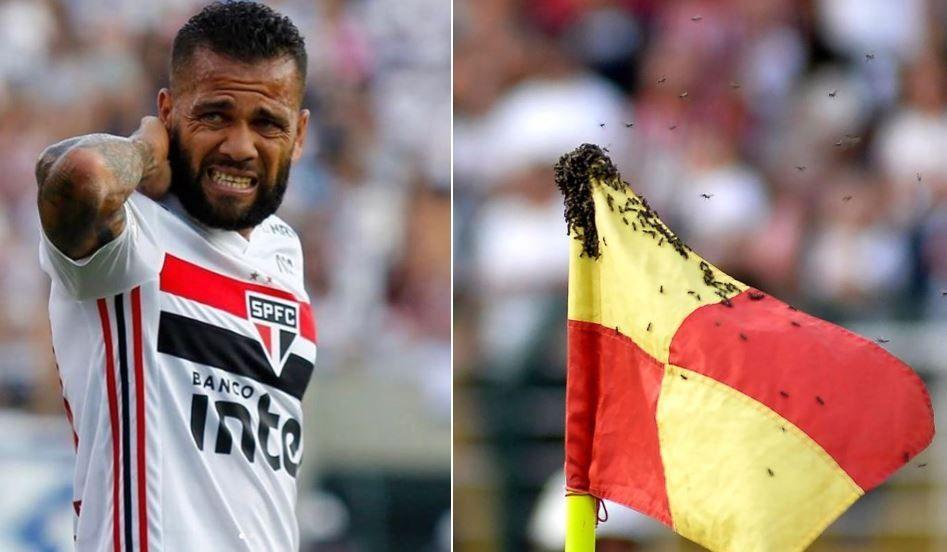 Insólito: Avispas atacaron a Dani Alves y paralizaron partido en Brasil